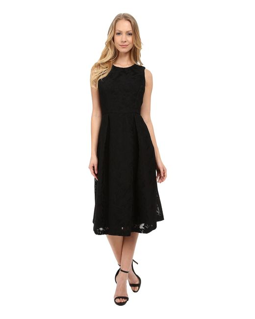 Calvin Klein Sleeveless Fit Amp Flare Lace Scuba Dress In
