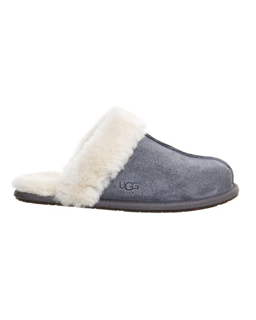 ugg scuffette slippers grey