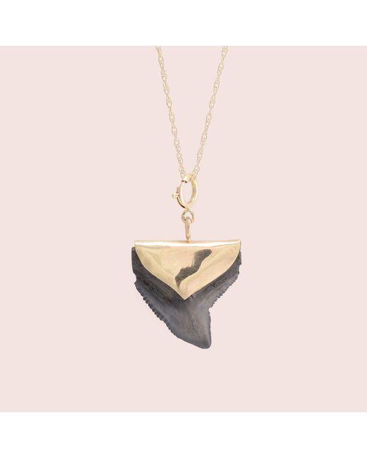 Erica Weiner - Green Shark Tooth Necklace - Lyst