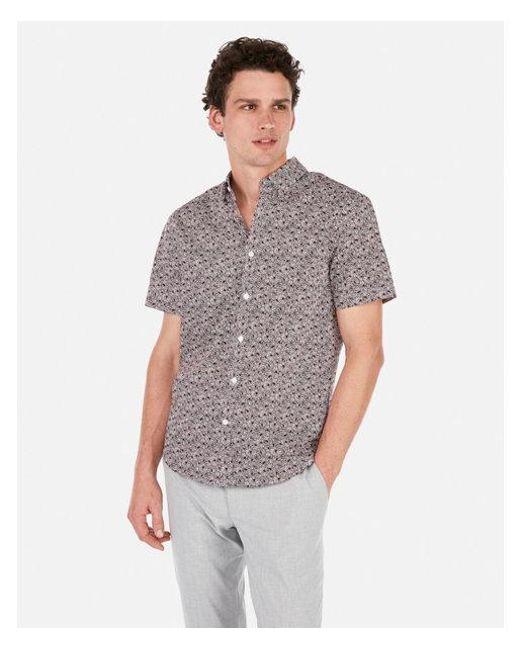 61e6ada0728 Express - Purple Classic Daisy Print Cotton Short Sleeve Shirt for Men -  Lyst