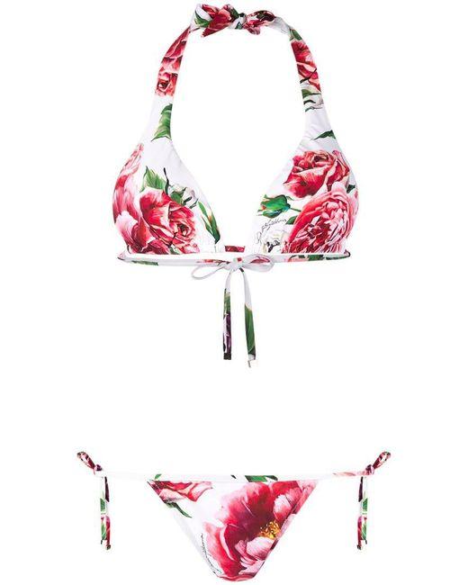 Dolce & Gabbana - White Rose Print Bikini - Lyst