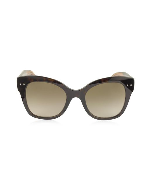 Bottega Veneta - Brown Bv0083s Acetate Cat Eye Women's Sunglasses - Lyst