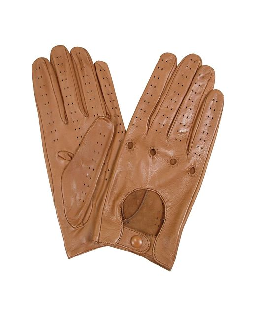 FORZIERI | Brown Women's Tan Perforated Italian Leather Driving Gloves | Lyst