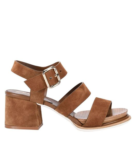 Tod's | Brown Shoes Women | Lyst