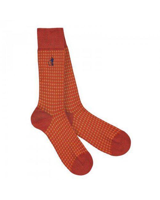 London Sock Company | Shaken And Stirred Orange for Men | Lyst