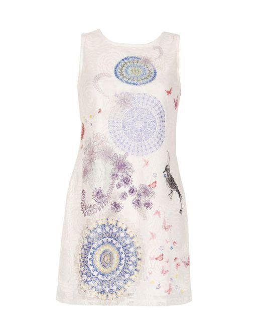 Izabel London | White Printed Lace Dress | Lyst