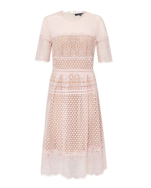 French Connection | Pink Anouk Lace Dress | Lyst
