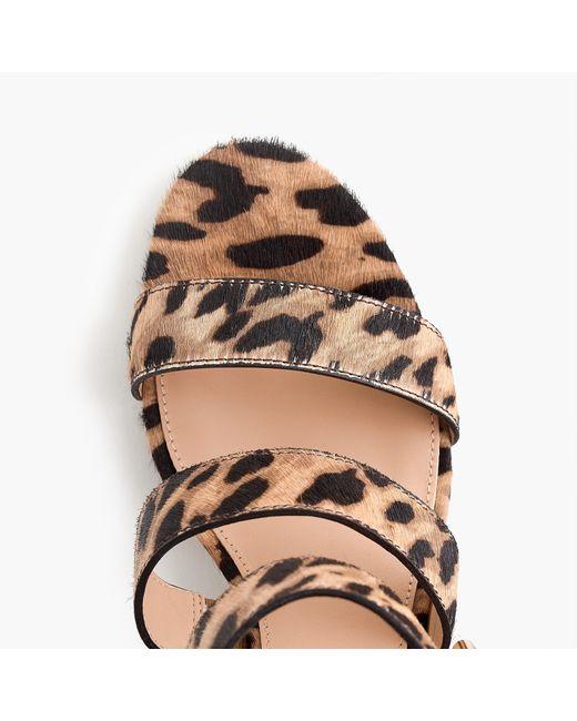 J.Crew - Brown Three-strap Sandals In Leopard Calf Hair - Lyst
