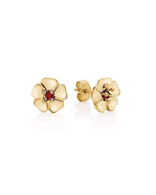 Augustine Jewels - Multicolor Gold And Ruby Cotswold Earrings - Lyst