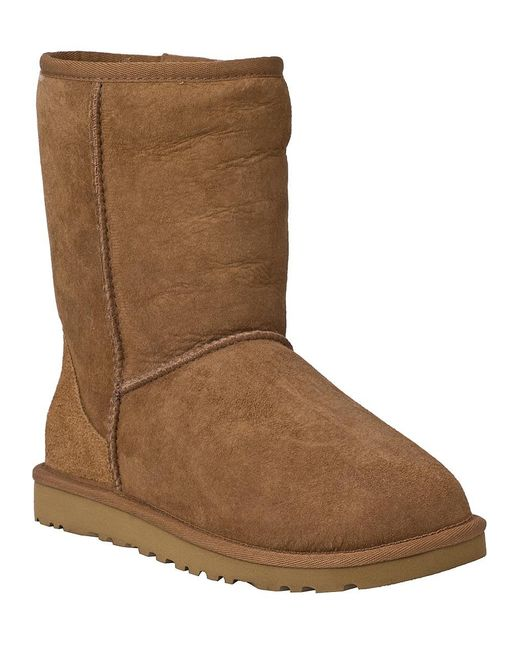Ugg | Brown Classic Short Boot Chestnut Suede | Lyst