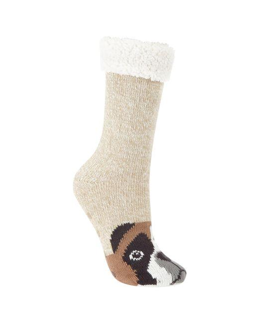 John Lewis   Natural Boxer Dog Chunky Novelty Ankle Socks   Lyst