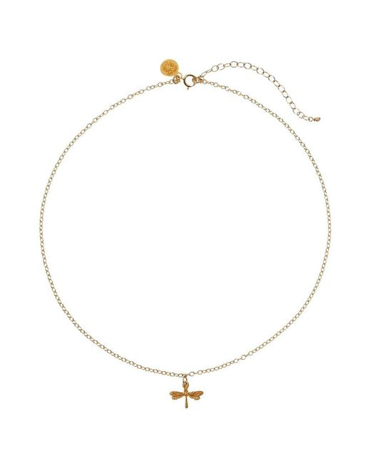 Dogeared | Metallic 14ct Gold Plated Dragonfly Choker Pendant Necklace | Lyst