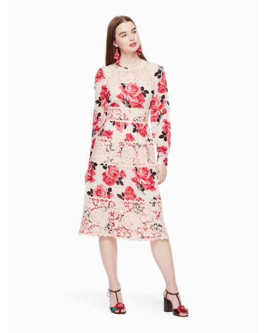 Kate Spade | Pink Rosa Lace Dress | Lyst