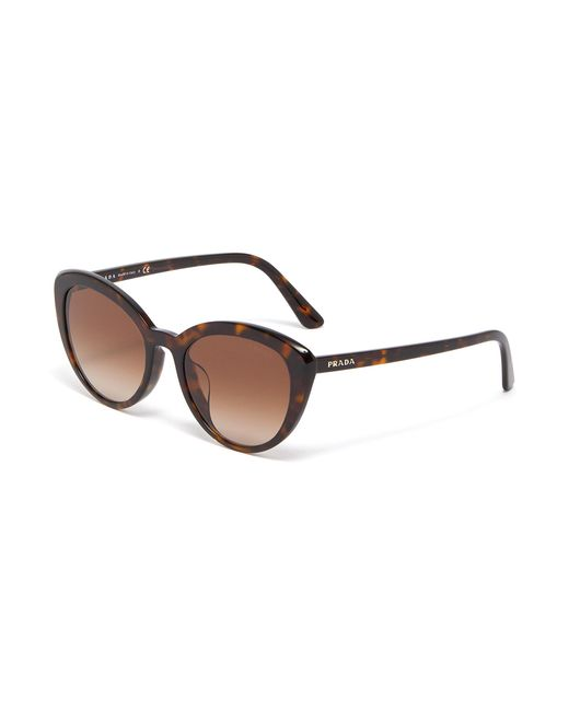 b607bd19b4df Prada - Brown Tortoiseshell Acetate Cat Eye Sunglasses - Lyst ...