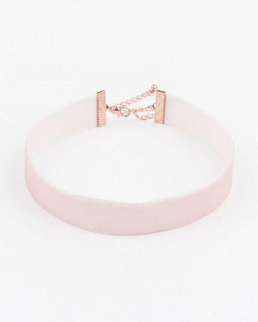 Le Chateau - Pink Velvet Choker Necklace - Lyst