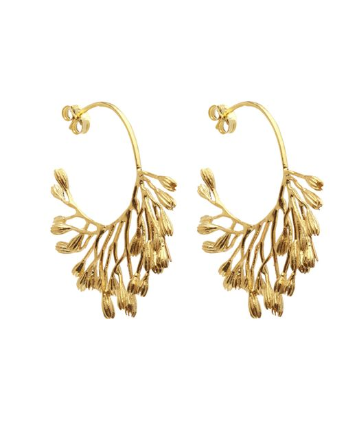 Alex Monroe - Metallic Gold-plated Fanned Seed Pod Hoop Earrings - Lyst