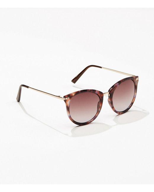 LOFT - Multicolor Tortoiseshell Print Metallic Arm Round Sunglasses - Lyst