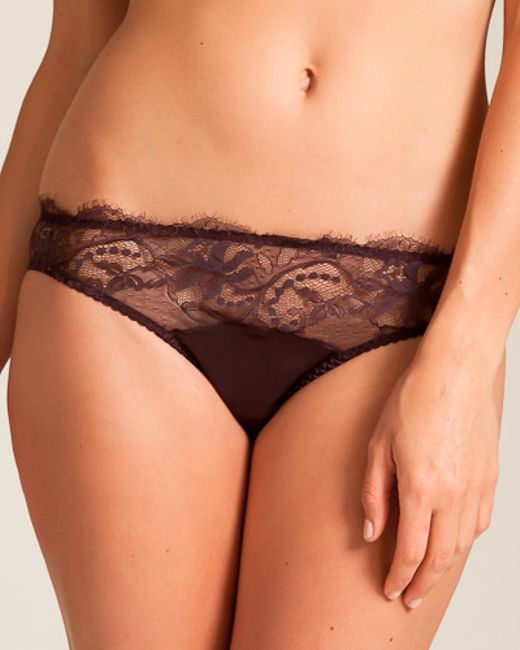 Fleur of england Hot Chocolate Lace Brief in Multicolour ...