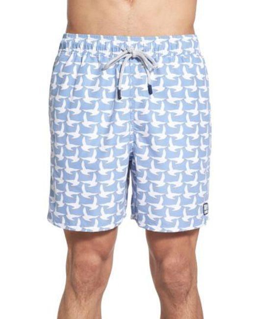Tom & Teddy - White Seagull Print Swim Trunks for Men - Lyst