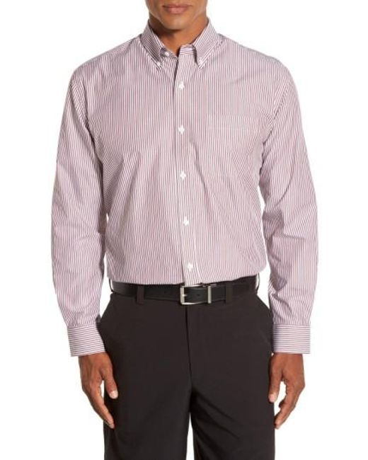Cutter & Buck | Multicolor 'epic Easy Care' Regular Fit Mini Bengal Stripe Sport Shirt for Men | Lyst