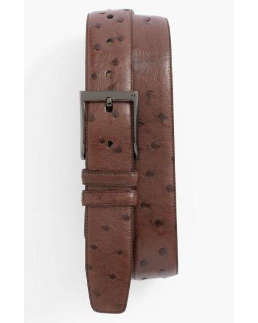 Mezlan | Brown Ostrich Belt for Men | Lyst