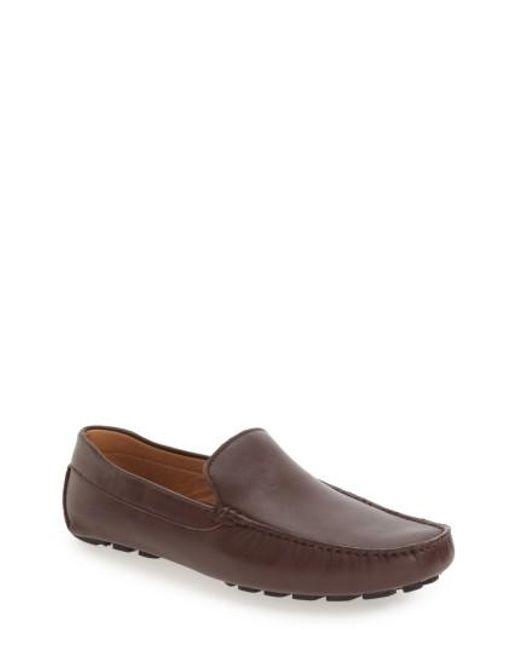 Zanzara | Brown 'picasso Ii' Driving Shoe for Men | Lyst