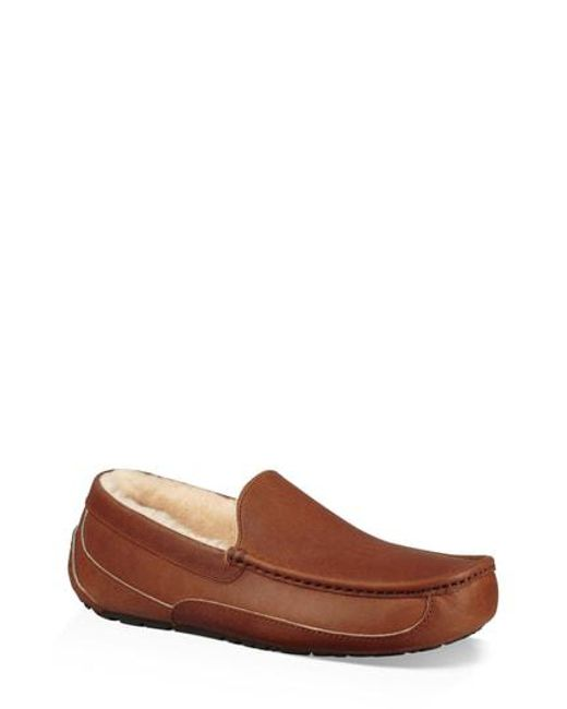 2ee5dc33508 Men's Brown Ugg Ascot Pinnacle Slipper