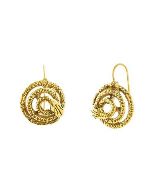 Steve Madden | Metallic Snake Earrings | Lyst