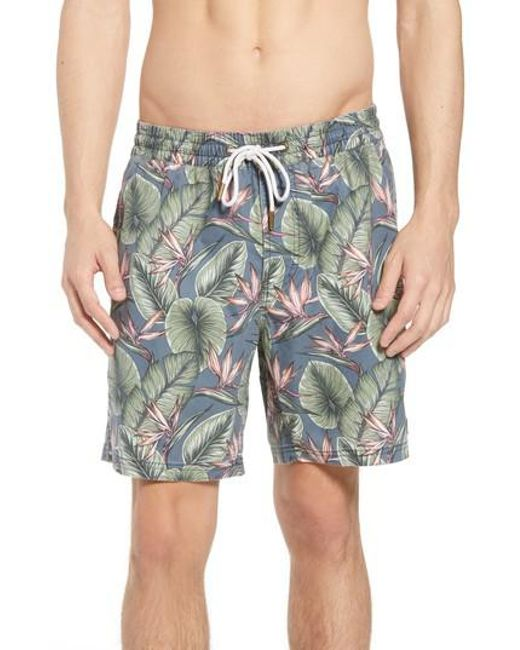 246ec9137c Lyst - Barney Cools Amphibious Swim Trunks in Blue for Men