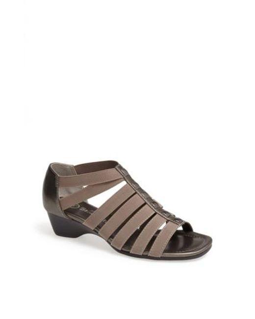 Bella Vita | Brown 'paula Ii' Sandal | Lyst