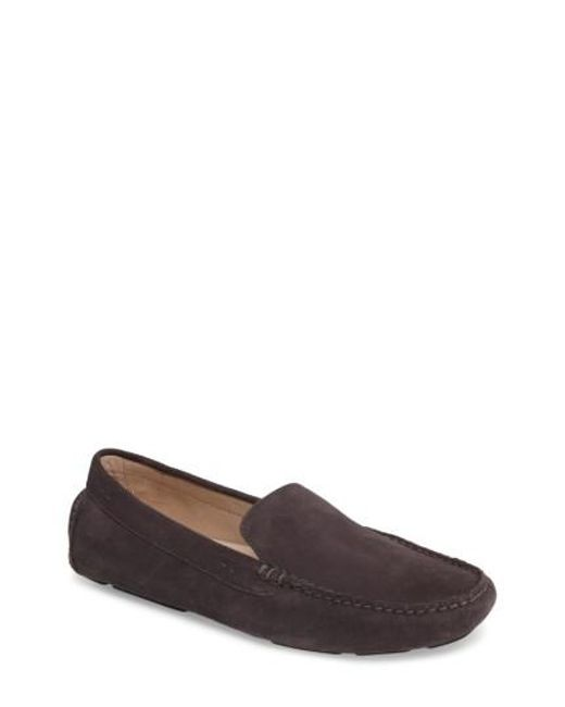 Tommy Bahama | Gray Pagota Driving Loafer for Men | Lyst