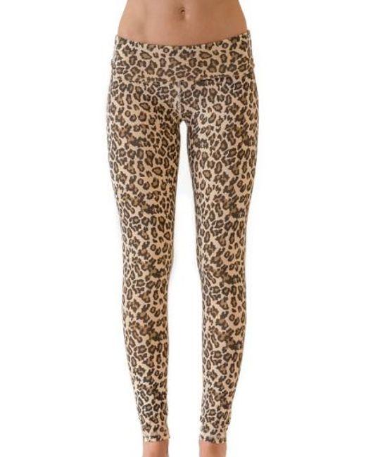 Leopard Print Louco Light Gym Leggings