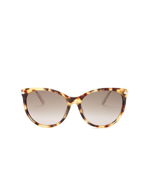 Gucci | Brown Women's Cat Eye Sunglasses | Lyst