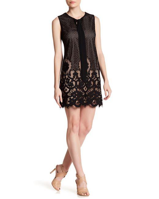 Cece by Cynthia Steffe | Black Rosie Tie Neck Lace Dress | Lyst