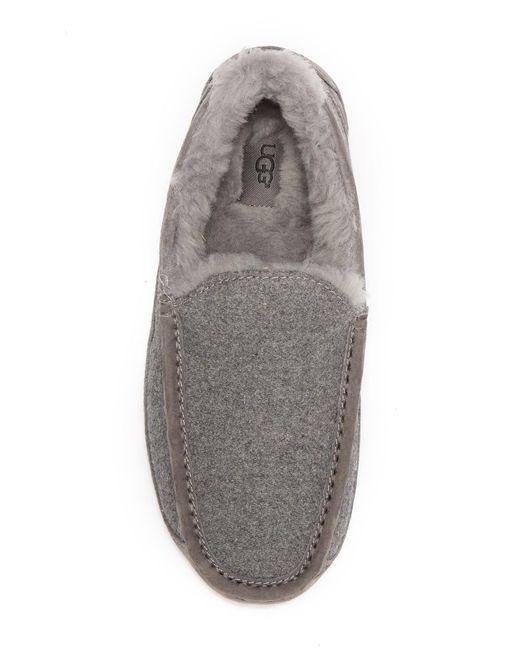 5668cf864 ... Ugg - Gray Ascot Uggpure(tm) Slipper for Men - Lyst ...