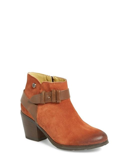 Bussola | Brown 'roni' Bootie | Lyst