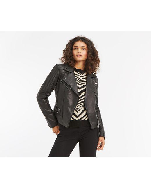 141aec386fdd Oasis - Black Leather Jacket - Lyst ...