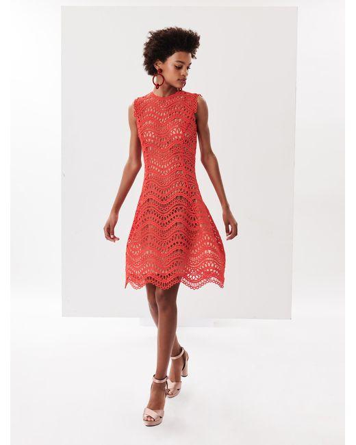 Oscar de la Renta - Red Wave Guipure Lace Cocktail Dress - Lyst