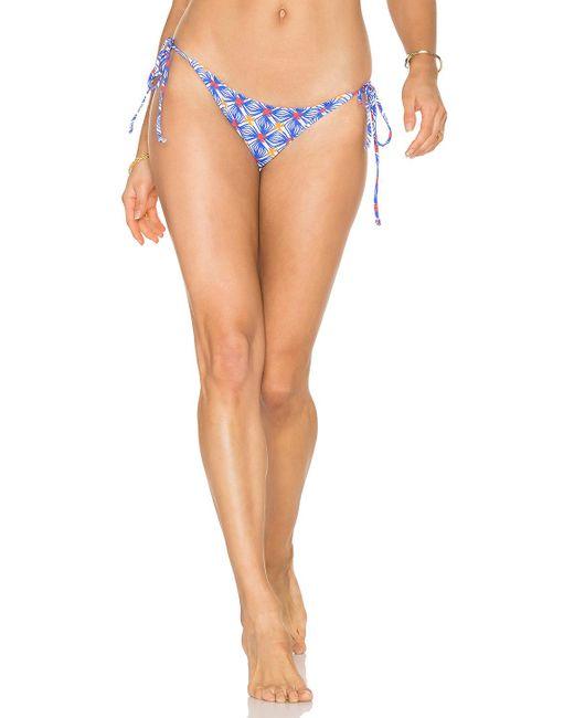 the gallery for gt c string bikini bottom