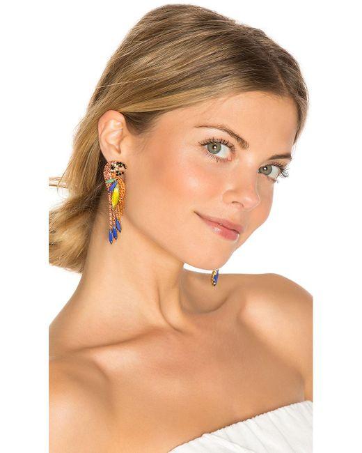 Elizabeth Cole   Multicolor Paulina Parrot Earring   Lyst