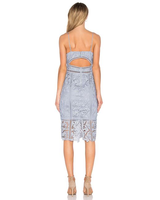 Bardot Botanica Lace Dress In Blue