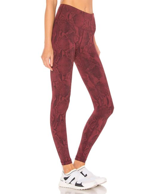 90790a6ec04b62 ... Vimmia - Red Printed Core Legging - Lyst ...