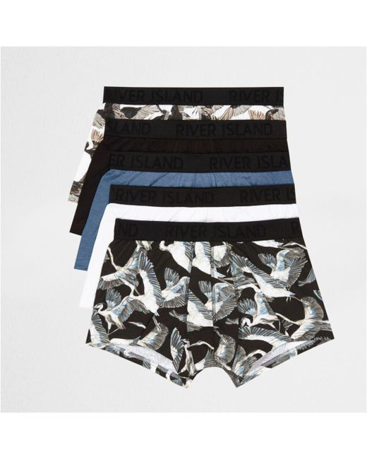 River Island | Blue Bird Print Hipster Multipack for Men | Lyst