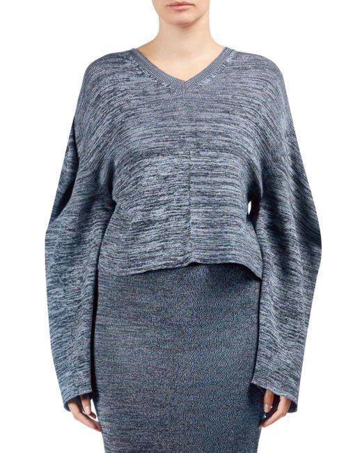 Stella McCartney - Blue Cotton Heathered Long Sleeve Sweater - Lyst
