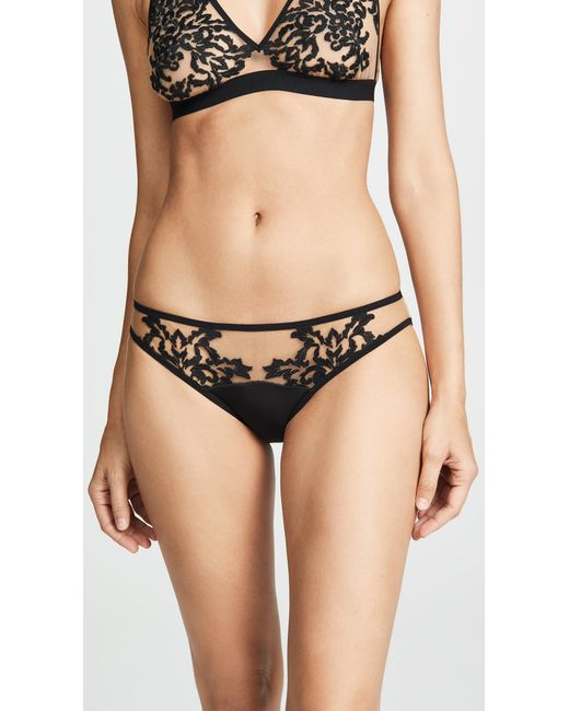 Thistle & Spire - Black Cypress Embroidered Bikini Briefs - Lyst