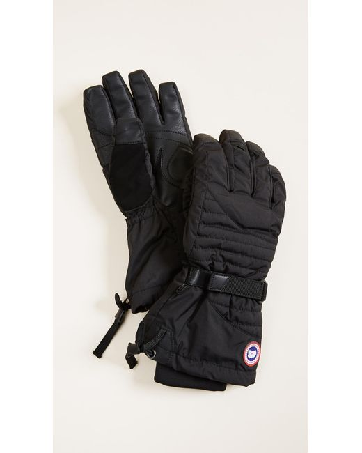 Canada Goose - Black Arctic Down Gloves - Lyst ...
