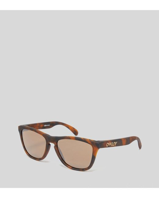 ebf41b383e3 Oakley - Brown Frogskins Sunglasses for Men - Lyst ...