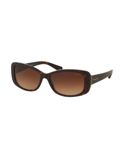799dd3ae COACH Hc8168f Asian Fit 512013 Tortoise in Brown - Lyst