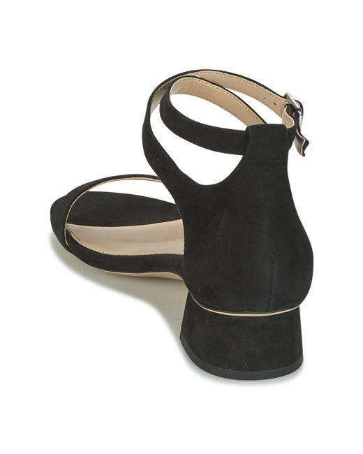 27850a545c2 ... Lauren by Ralph Lauren - Black Betha Women s Sandals In Multicolour ...