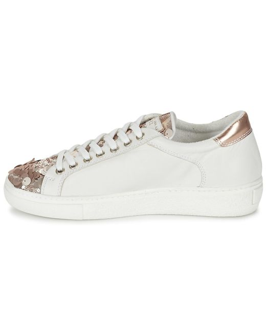 Tosca Blu REOLI women's Shoes (Trainers) in New Style RTMAI
